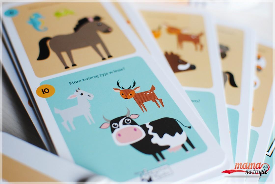 zagadki obrazkowe o zwierzętach