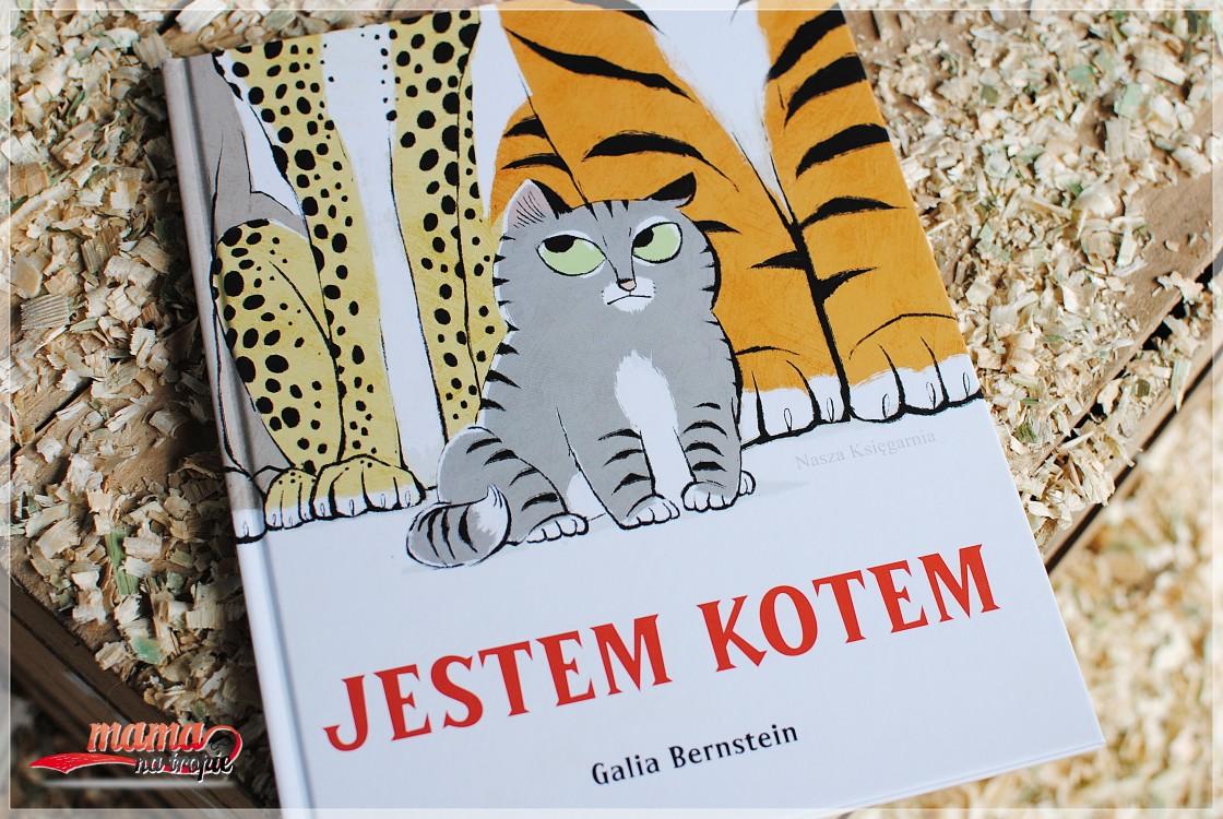 jestem kotem, mądra książka, książka dla dzieci
