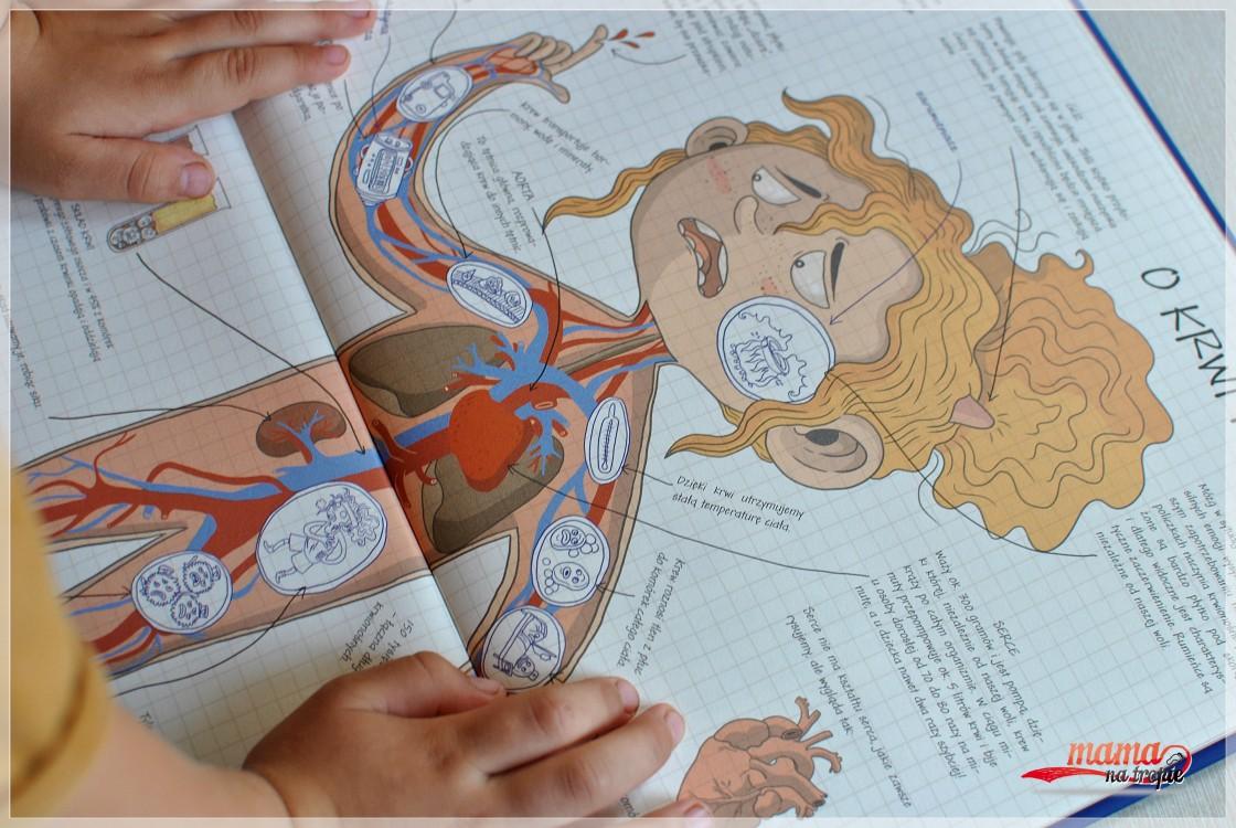 ciało człowieka, zagadki anatomii, książka dla dzieci, nasza księgarnia