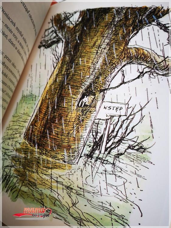 kubuś puchatek, chatka puchatka, nasza księgarnia, książka dla dzieci, A.A. milne