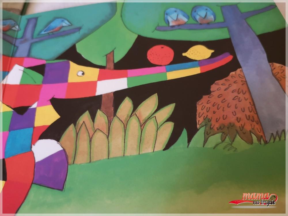 elmer, książki dla dzieci, papilon
