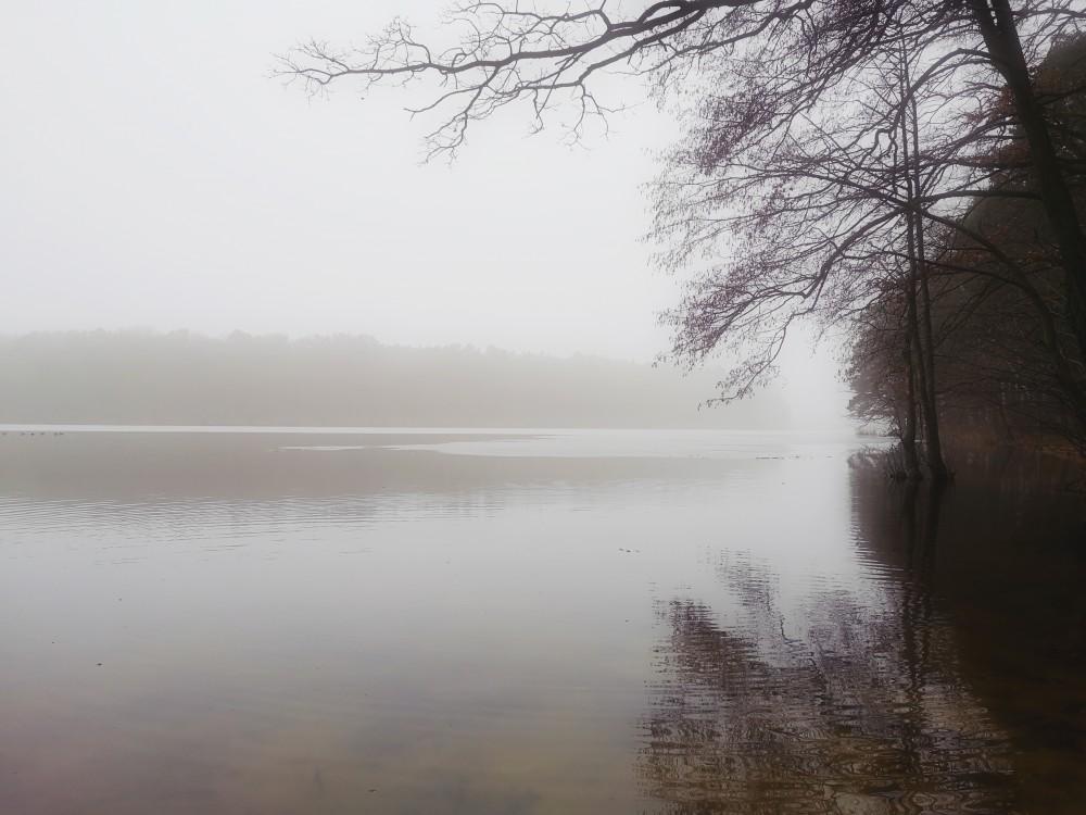 jezioro głębokie, szczecin, spacer rodzinny, spokojny dzień, mgła, Polska