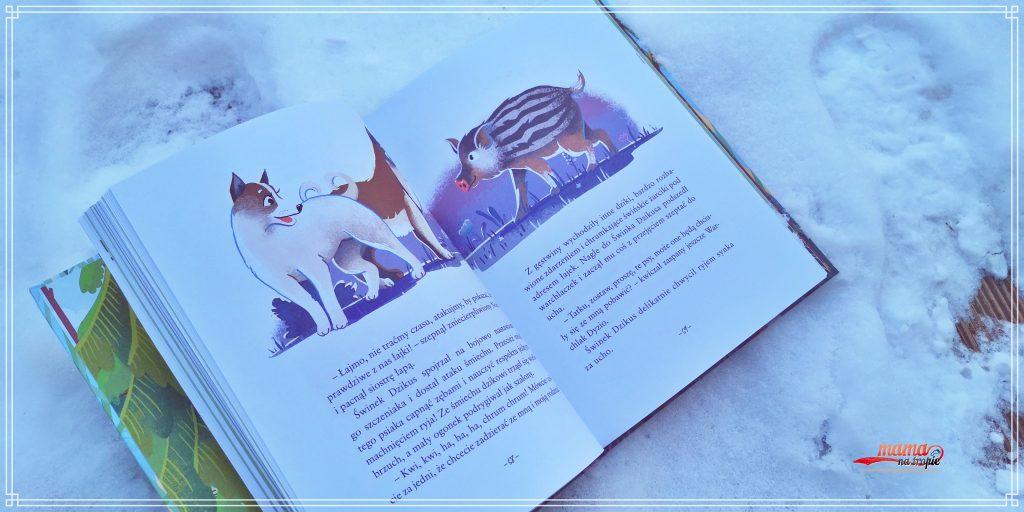 łapa w łapę, sekretne życie leśnych zwierząt, ewa zgrabczyńska, książka dla dzieci